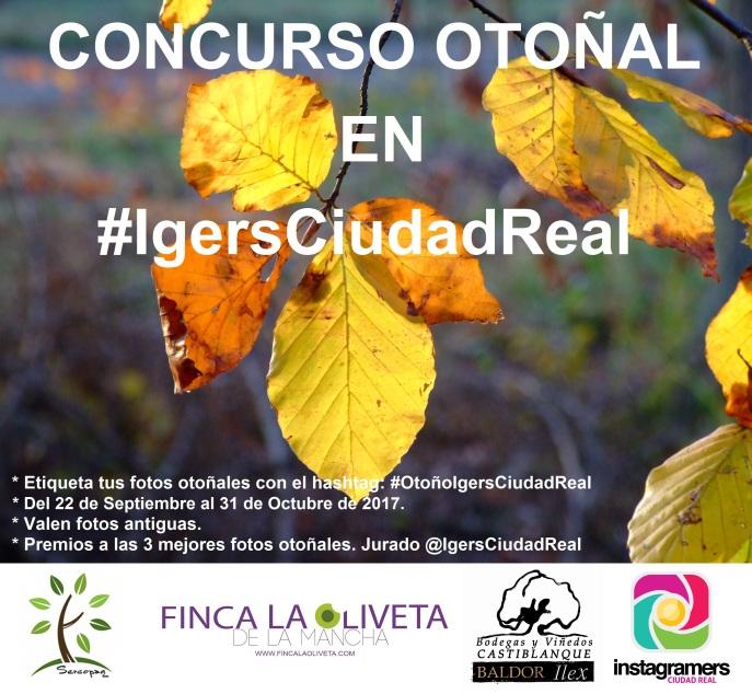 Concurso Otoño IgersCiudadReal